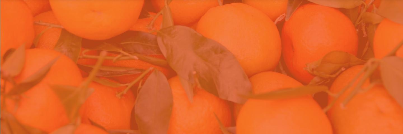 Le jus d'orange pressé dans votre magasin franprix